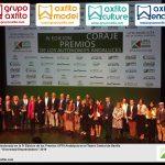 Entrega de premios en la IV Edicion de los premios UPTA Andalucia - Diversidad Emprendedora 2019 - Grupo Axfito